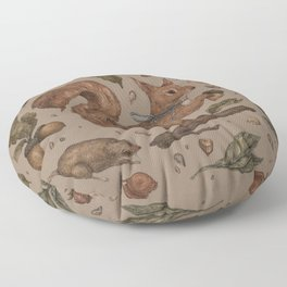 Red Squirrel Floor Pillow