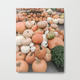 Modern Pumpkin Patch Metal Print