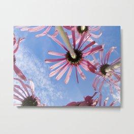 Color Botanical 2 Metal Print