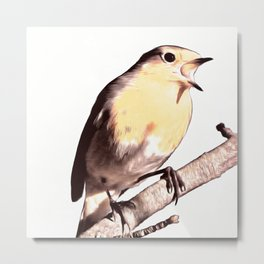 The Winter Robin Song Metal Print