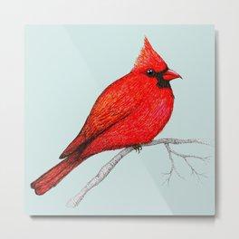 Northern cardinal pen drawing Metal Print