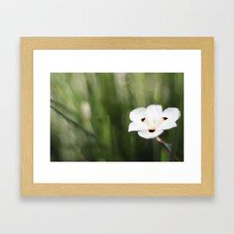 An Flower Framed Art Print