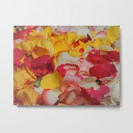 Rose Petals in Cuenca Metal Print