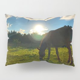 Relaxation Pillow Sham