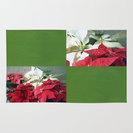 Mixed color Poinsettias 3 Blank Q5F0 Rug