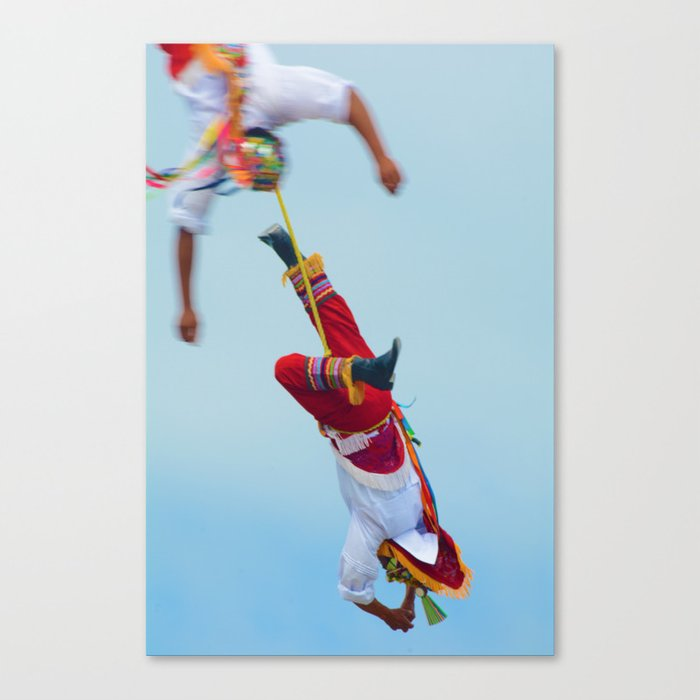 Flying artist collection _04 Canvas Print