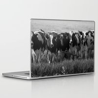 cows Laptop & iPad Skins featuring Cows by Julie Luke
