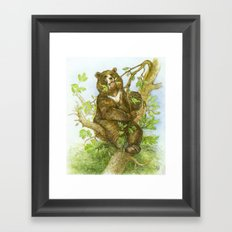 Bear on a Tree Framed Art Print