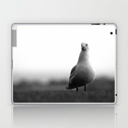 A Portrait of a Pensive Seagull Laptop & iPad Skin