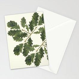 Oak ensemble (Cream  ground) Stationery Cards