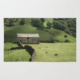 Walls and Barns Rug