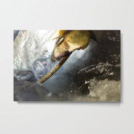 Ice Age 7 Metal Print