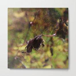 Old leaf artistic composition Metal Print