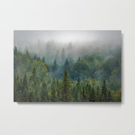 Forest and Fog 03 Metal Print