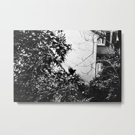 EARLY MORNING, A MESSAGE FOR YOU. Metal Print