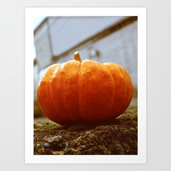 Empty lot pumpkin Art Print