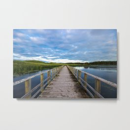 Swamp Walk Metal Print