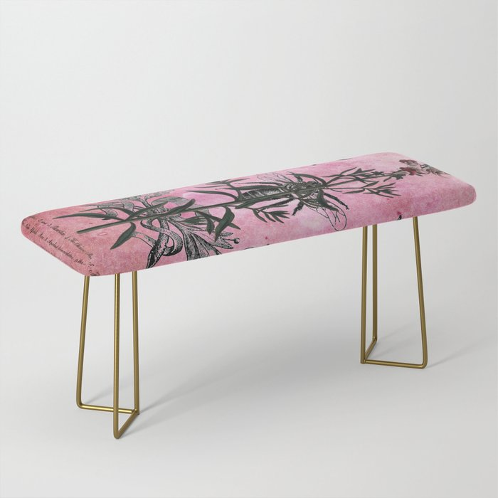 Vintage Bees with Toadflax Botanical illustration collage Bench