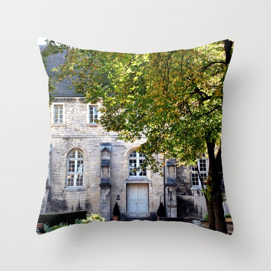 Archaeology Throw Pillow