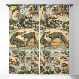 Reptiles Poster Vintage Blackout Curtain