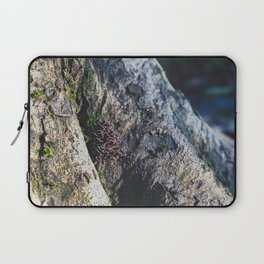 Tree Trunk Mushrooms - Nature Photography Laptop Sleeve