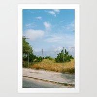Fences, grass, sky - Curacao Art Print
