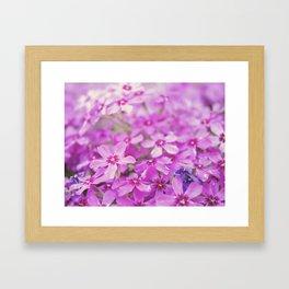 Floral 7 Framed Art Print