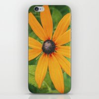 the shining iPhone & iPod Skins featuring Shining by DejaReve