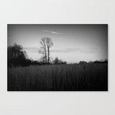 Twin Trees (B&W) Canvas Print