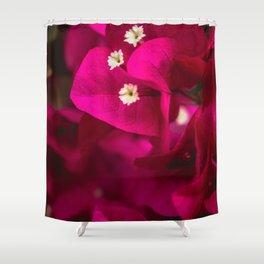 bougainvillea close up  Shower Curtain