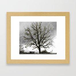 L'arbre de Gourdon Framed Art Print