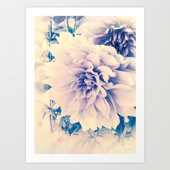 Delicate Beauty (Vintage Blue Lavender Dahlias) Art Print