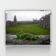 Ancient Windowsill Laptop & iPad Skin