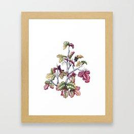 Poison Oak Framed Art Print