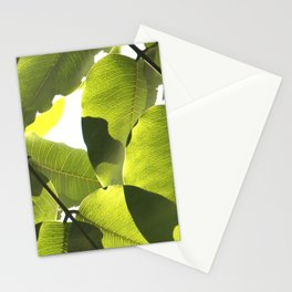 Close Up Leaves Stationery Cards