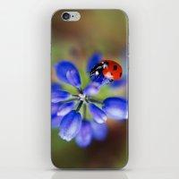 polka dot iPhone & iPod Skins featuring Polka Dot by Ekaterina La