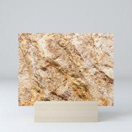 Limestone Textures 9 Mini Art Print