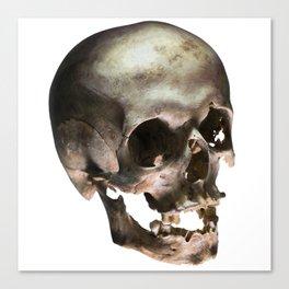 skully Canvas Print