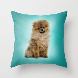Cute Pomeranian Dog Throw Pillow