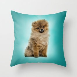 Cute Pomeranian Dog Throw Pillow