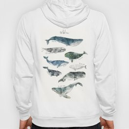 Whales Hoody