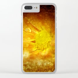 the beauty of a day in fall -2- Clear iPhone Case