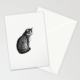 Domestic cat from Aileen Aroon A Memoir Of A Dog With Other Tales Of Faith Friends And Favourites Sk Stationery Cards