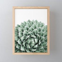 Succulent splendour Framed Mini Art Print