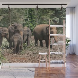 Sri Lanka Elephants in Jungle Landscape Wall Mural