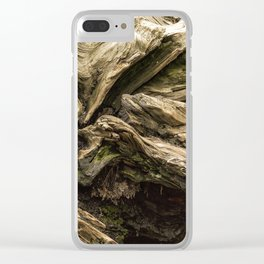 Sequoia Abstract, No. 1 Clear iPhone Case