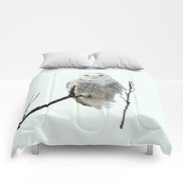 Snowy in the Wind (Snowy Owl 2) Comforters