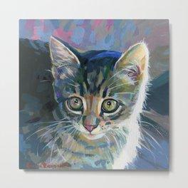 Kitten Feba Metal Print