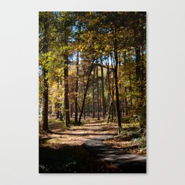 Kiroli Park, part one Canvas Print