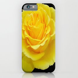 Beautiful Yellow Rose Flower on Black Background iPhone Case